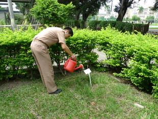 用愛心灌溉