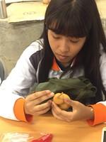 葫蘆蝶谷巴特DIY