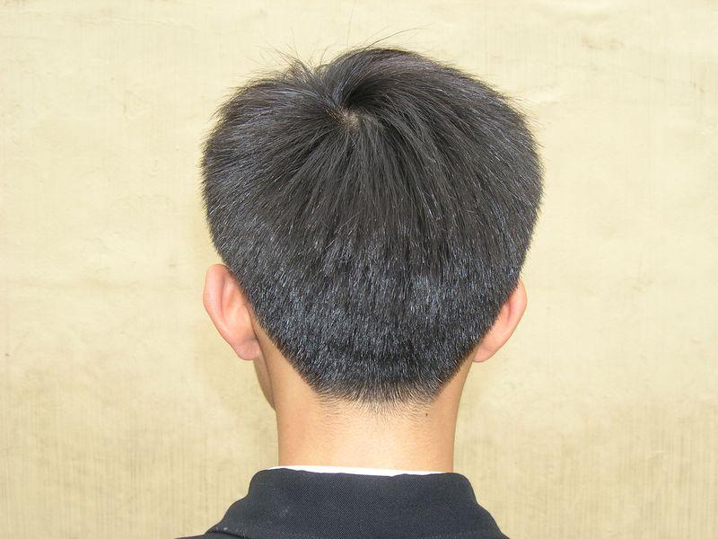 男生頭髮後面略以15度向上斜推約三指距